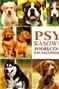 Psy rasowe. Podręczna encyklopedia