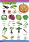 Warzywa - plansza dydaktyczna
