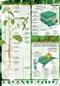 Budowa rośliny, proces fotosyntezy - plansza