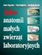 Atlas anatomii małych zwierząt ...