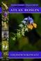 Atlas roślin – Trędownikowate