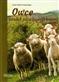 Owce Poradnik dla początkującego hodowcy