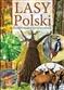 Lasy Polski Ilustrowany Przewodnik