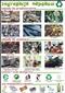 Segregacja odpadów - plansza dydaktyczna