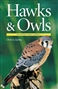 Hawks and Owls of Eastern North America