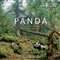 Panda: Back from the Brink