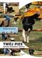 Twój pies Podstawy wychowania i szkolenia