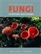 The Encyclopedia of Fungi of Britain ...
