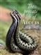 The Private Life of Adders