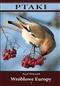 Ptaki: Wróblowe Europy, cz. I